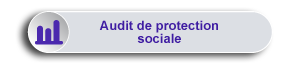 Maxirem Expert - Audit de protection sociale